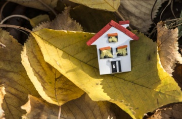 House miniature and autumn leaves. Paper house